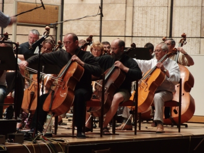 Close up of cellos